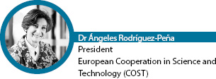 dr-angeles-rodriguez-pena