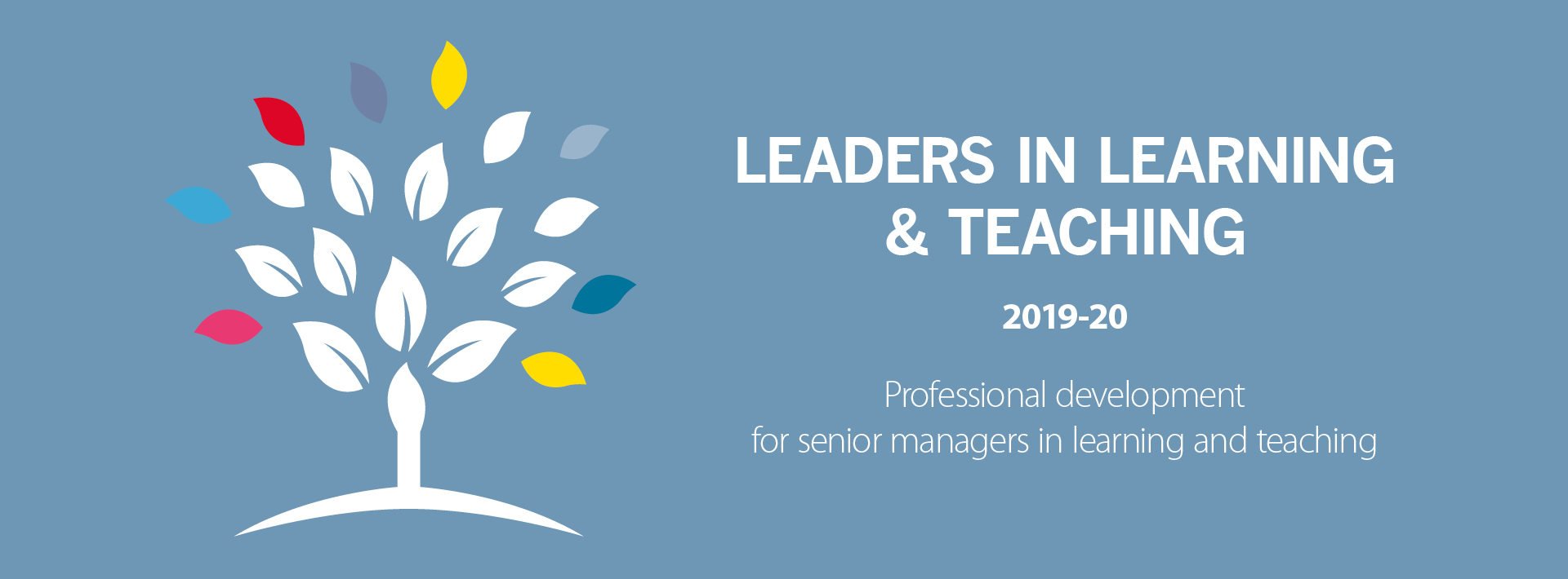 Leaders in Learning & Teaching (LLT) 2019 – 2020 - Chartered